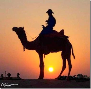 Camel Cowboy