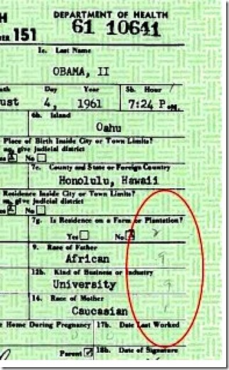Hand written codes on Obama birth document