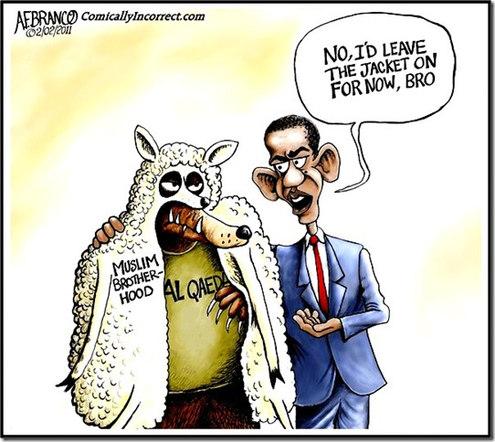 MB Wolf - BHO Advice toon