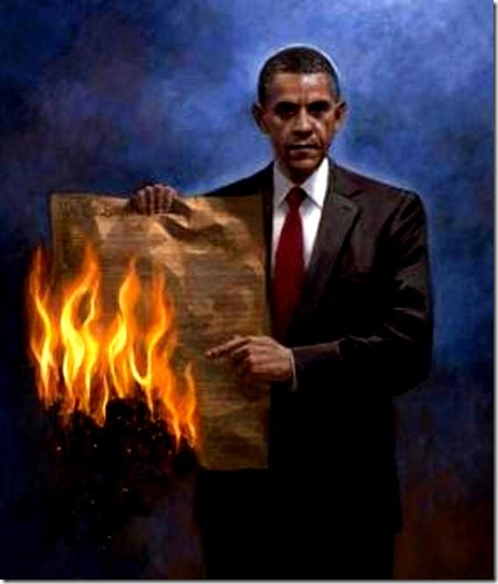 BHO Burning Constitution