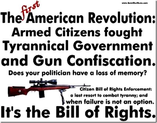 1st American Rev - Gun Rights