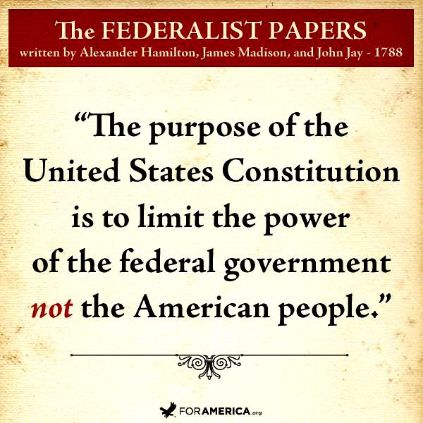 The primary purpose of the federalist papers was to