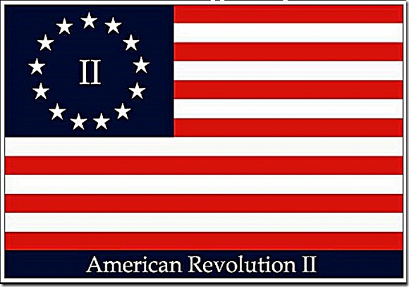Flag 2nd American Revolution