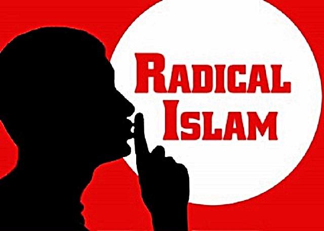http://oneway2day.files.wordpress.com/2014/02/true-islam-is-radical-shhh.jpg