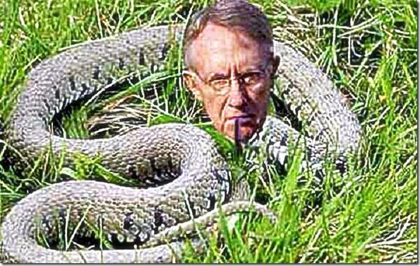 Harry Reid the Snake