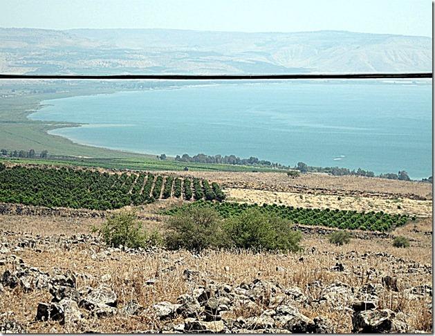 Holy Land scene