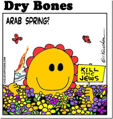Sun-shiny Arab Spring- Kill Jews toon