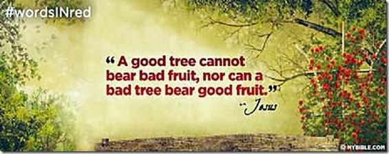 Good Tree- not both good & bad fruit