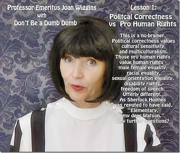 Joan Wiggins - PC vs Pro-Human Rights promo