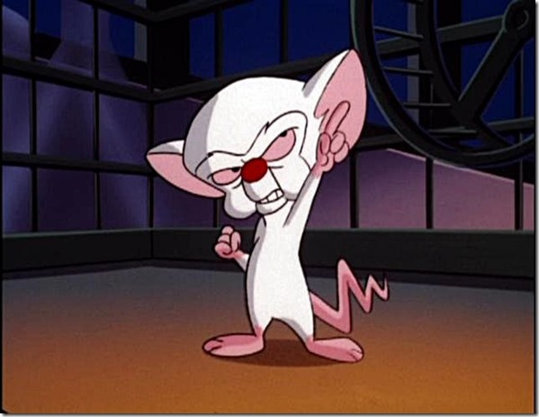 Pinky and the Brain - World Domination