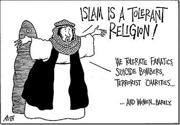 Actual Islamic Tolerance toon