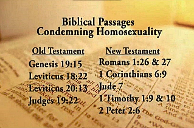 essays on the bible and homosexuality The bible and people against homosexuality i feel there are a lot of contradictions there are so many because so may people say they follow the bible and.
