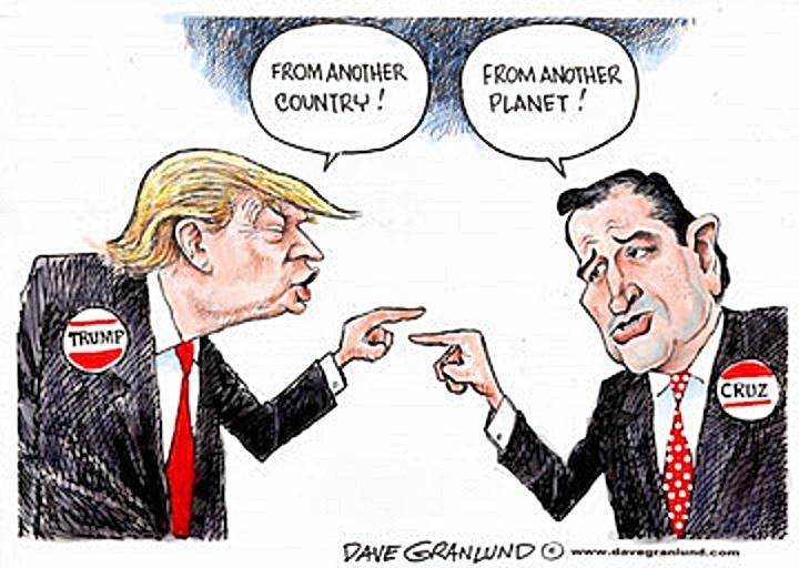 Trump vs Cruz political toon