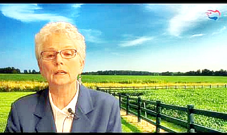 Ann Corcoran screen capture from Youtube