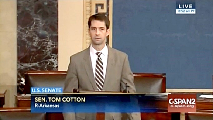 Tom Cotton 5-25-16