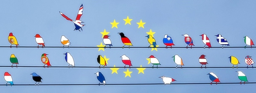 EU birds-wire & UK bird leaves