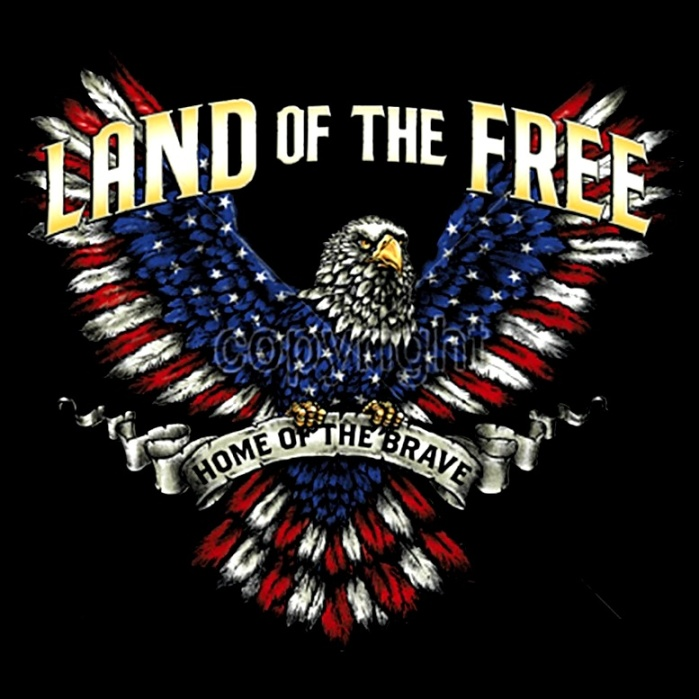 red, white & blue eagle- Free & Brave