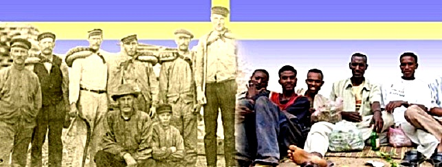 somali-swedes