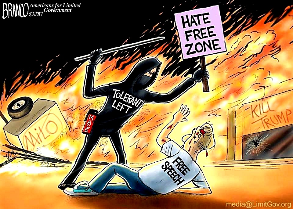 Image result for coulter uc b protest cartoon