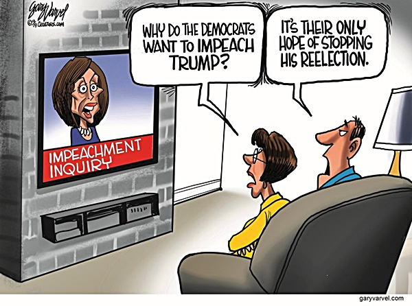 Dem Desperation 2020 toon